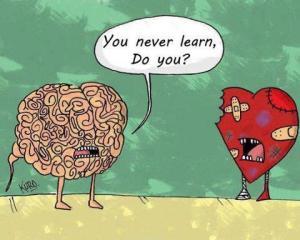 heart,brain