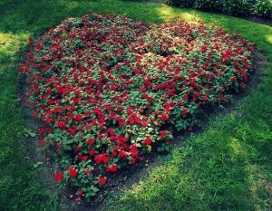 Flower Garden Theory
